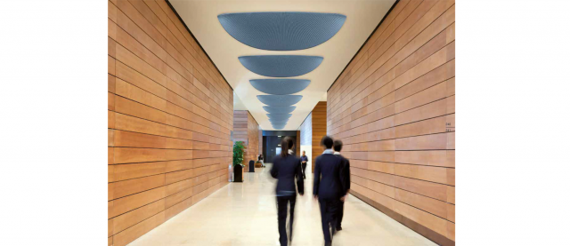 PINNA SOUND ABSORBING CEILING SYSTEM